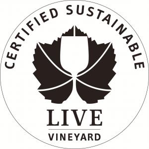 LIVE Vineyard