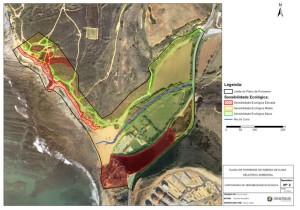 Estudo-de-Impacte-Ambiental-Sinergiae-Ambiente